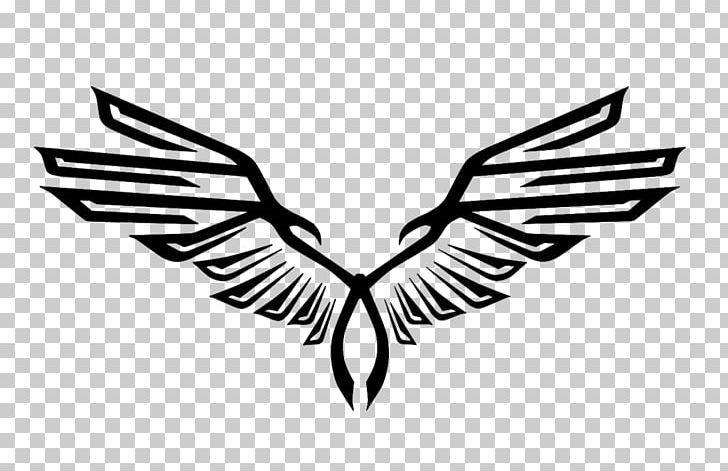Eagle logo design black and white clipart jpg transparent Logo Eagle Graphic Design PNG, Clipart, Animals, Art, Arts, Beak ... jpg transparent