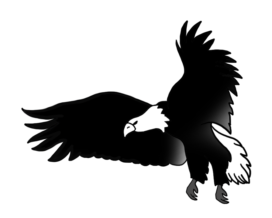 Eagle on basketball clipart picture library download American Eagle Drawing at GetDrawings.com | Free for personal use ... picture library download