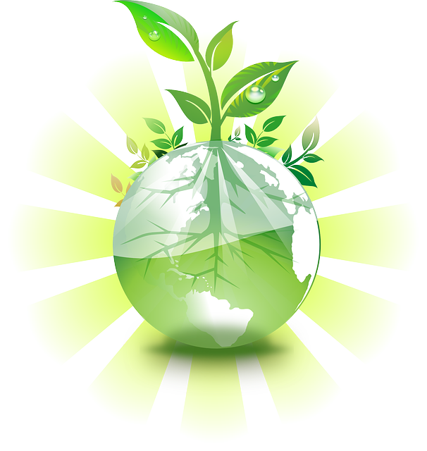 Money plant clipart graphic free stock 50 ways to save money by being green graphic free stock