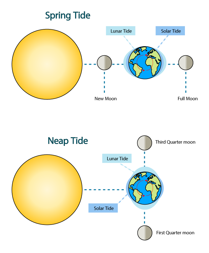 Earth with axis tilted toward sun free clipart. How do the phases