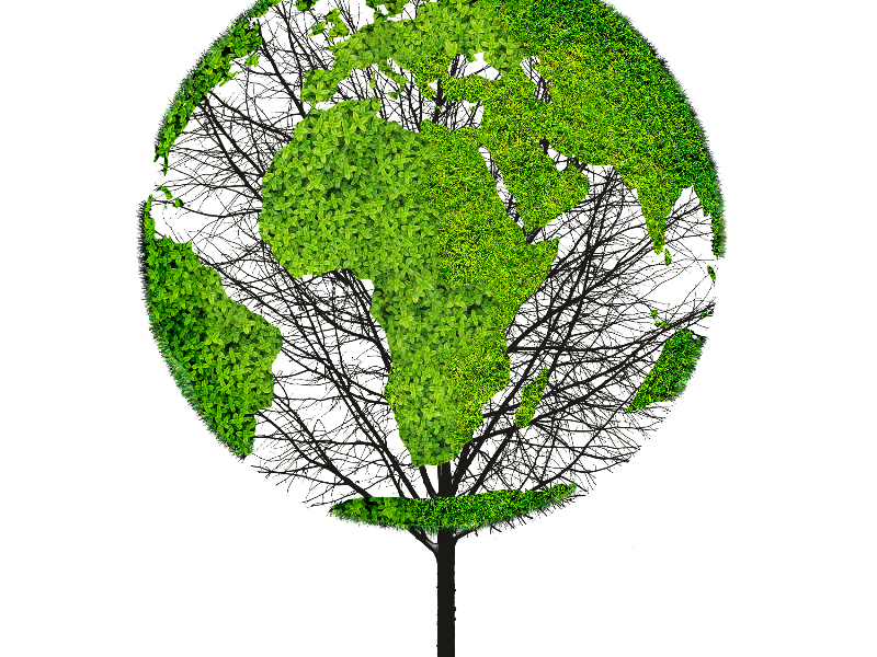 Earth day tree clipart. World map green png