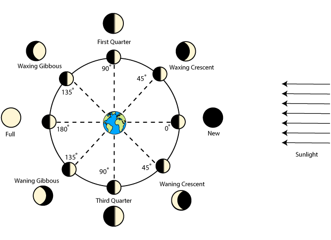 Earth moon sun clipart graphic free download What Causes the Phases of the Moon? | Science Project | Education.com graphic free download