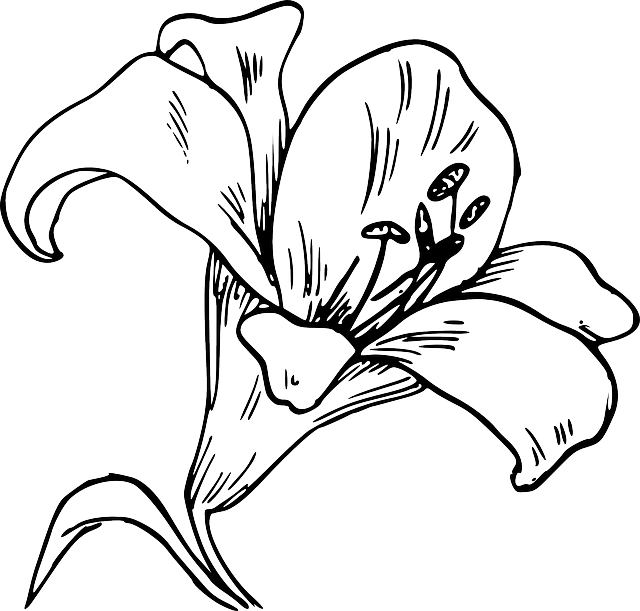 Easter lily and cross clipart clip freeuse download flower-bloom-plant-lily-nature-calla-tattoo.png (640×611) | my ... clip freeuse download