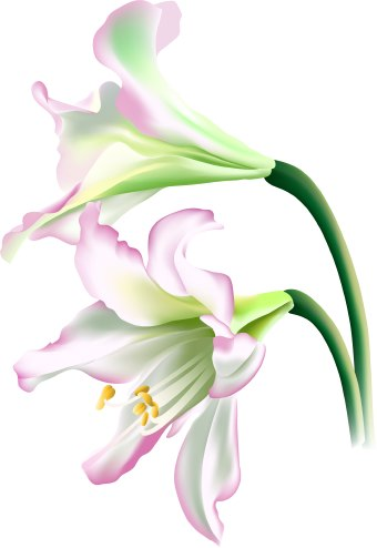 Easter lily clipart design for my visor banner free download Towel Clipart | Free download best Towel Clipart on ClipArtMag.com banner free download