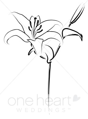 Easter row clipart clip art transparent Easter row lilies clipart - ClipartFox clip art transparent