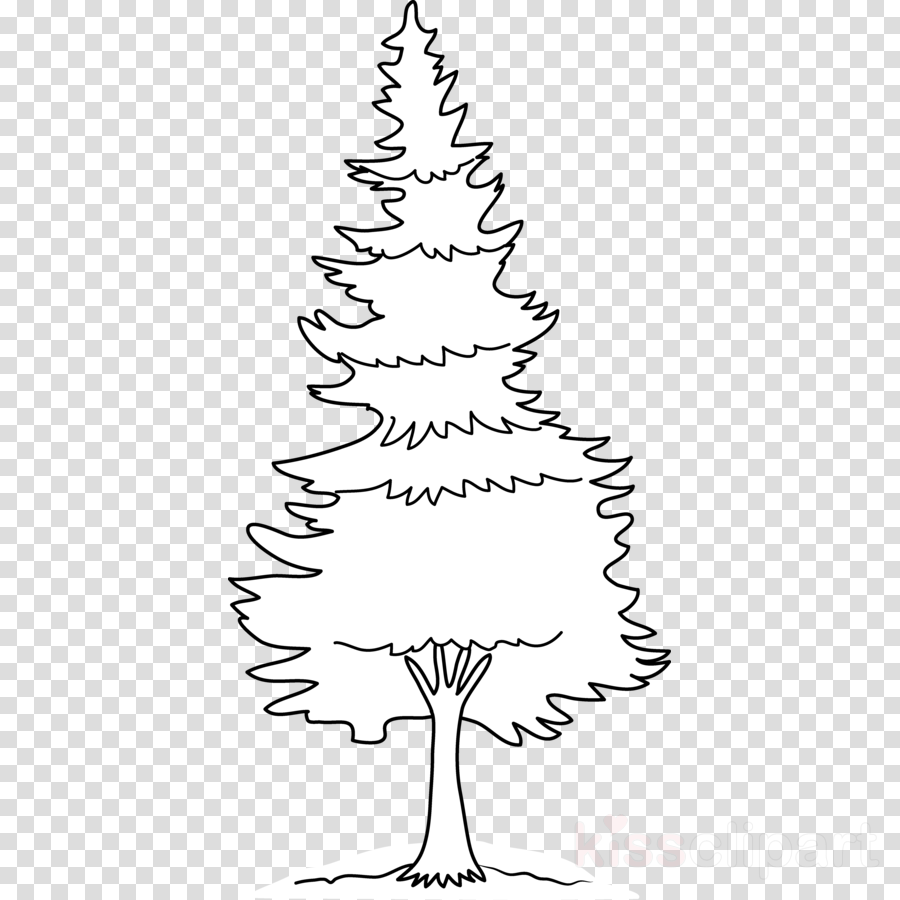 Eastern white pine clipart clipart black and white stock Download pine cartoon black and white clipart Eastern white pine ... clipart black and white stock