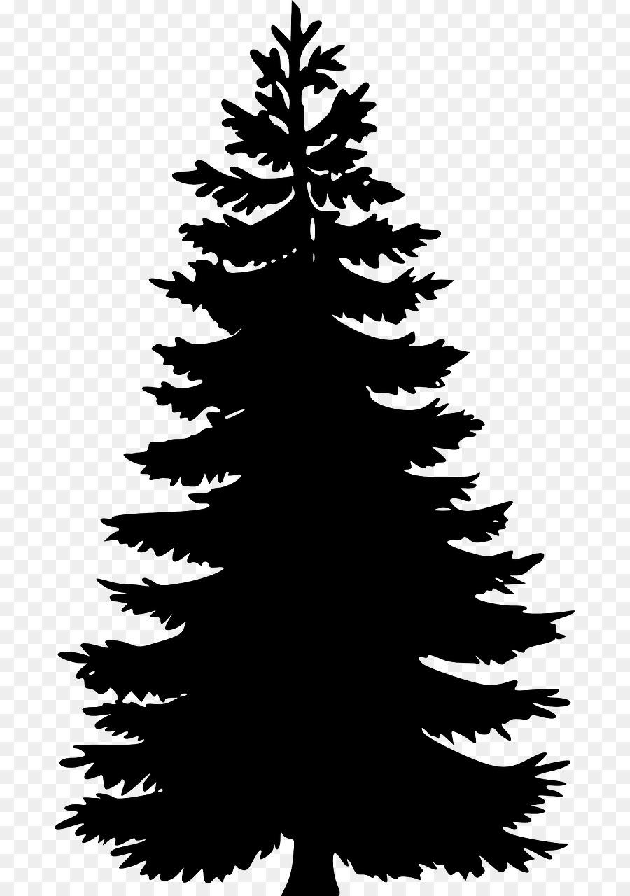 Eastern white pine clipart jpg black and white library Eastern White Pine Tree Clip Art - Tree #46774 - PNG Images - PNGio jpg black and white library