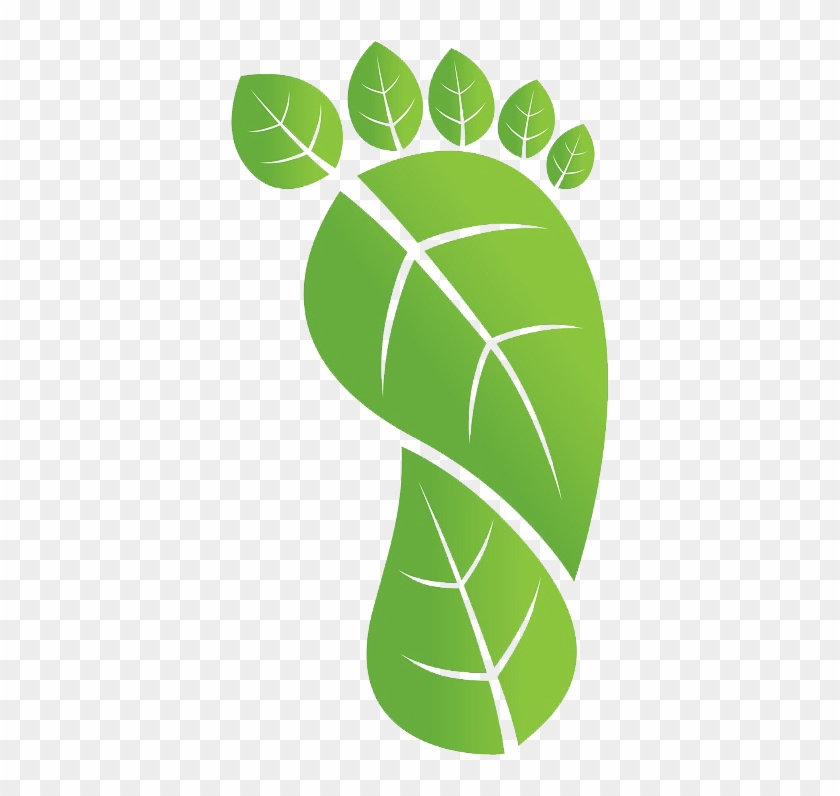 Ecological footprint clipart