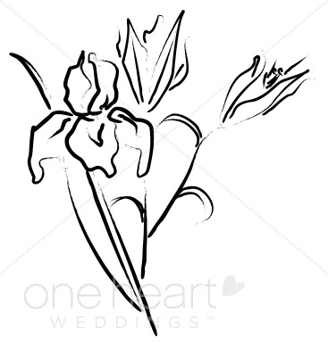 Elegant Wedding Flower Sketches, Elegant Wedding Flower Graphics ... clipart free