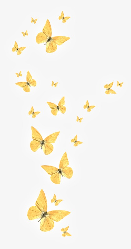 Elegantbutterfly clipart png free library Elegant Butterfly, Elegant, Butterfly PNG #141241 - Clipartimage.com png free library