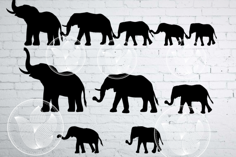 Elephant family clipart picture transparent download Elephant family holding tails clipart, Elephant eps, png picture transparent download