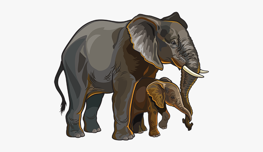 Elephant santa hat public domain clipart jpg transparent library Asian Elephant Clipart Public Domain - Elephant Two Png #2599347 ... jpg transparent library