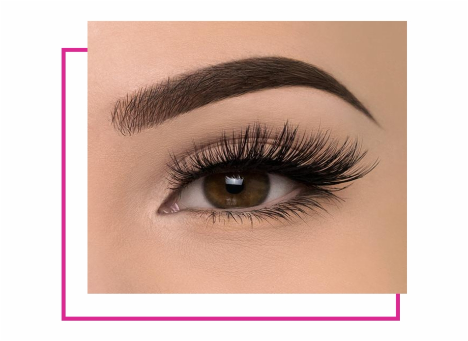 Elf cosmetics logo clipart graphic download Fake Lashes , Png Download - Elf Cosmetics Lashes Weylie Free PNG ... graphic download