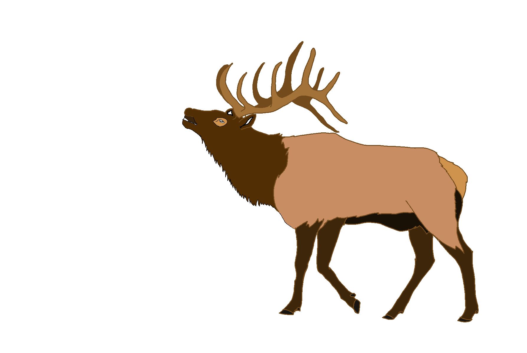 Elk clipart images vector library library Elk Deer Clip art - Cl Cliparts png download - 1787*1200 - Free ... vector library library