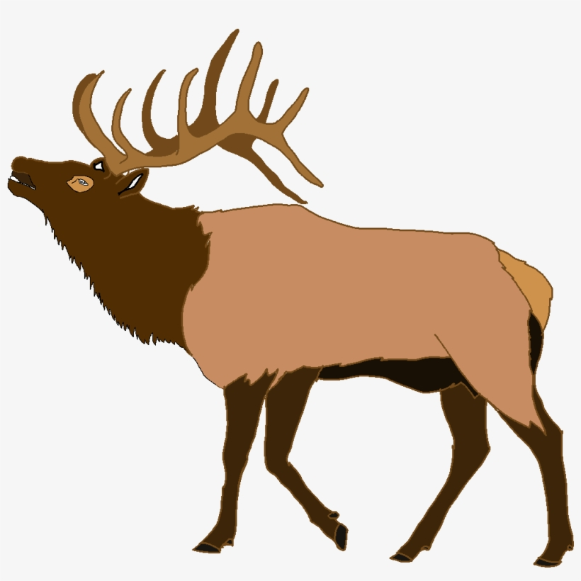 Elk clipart images clipart free library Vector Moose Svg - Elk Clipart Transparent PNG - 1787x1200 - Free ... clipart free library