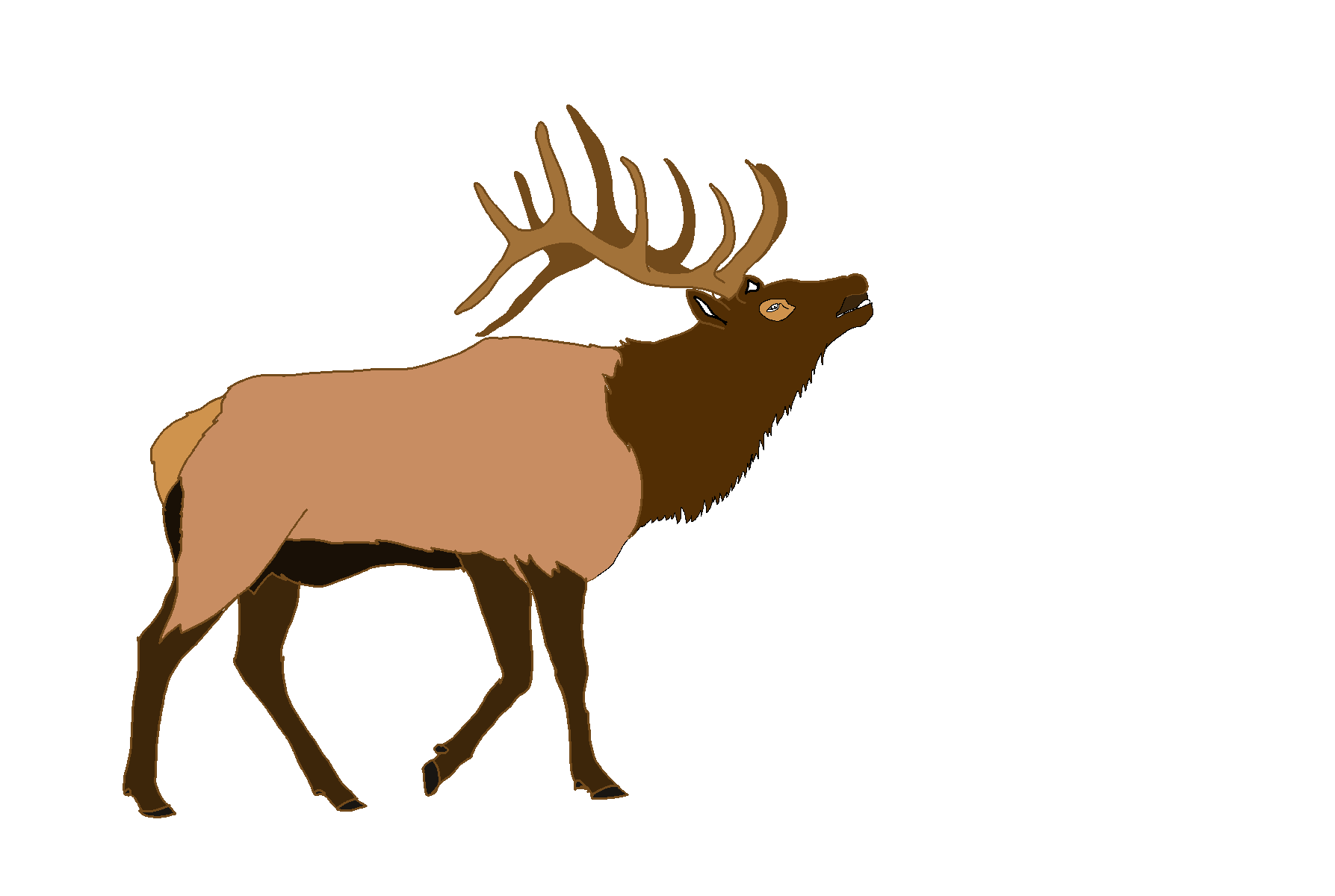 Elk clipart images clip black and white stock Elk PNG Clipart clip black and white stock