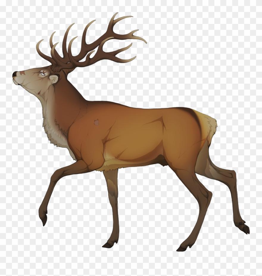 Elk clipart images freeuse stock Elk Clipart Golden Deer - Elk - Png Download (#3278334) - PinClipart freeuse stock