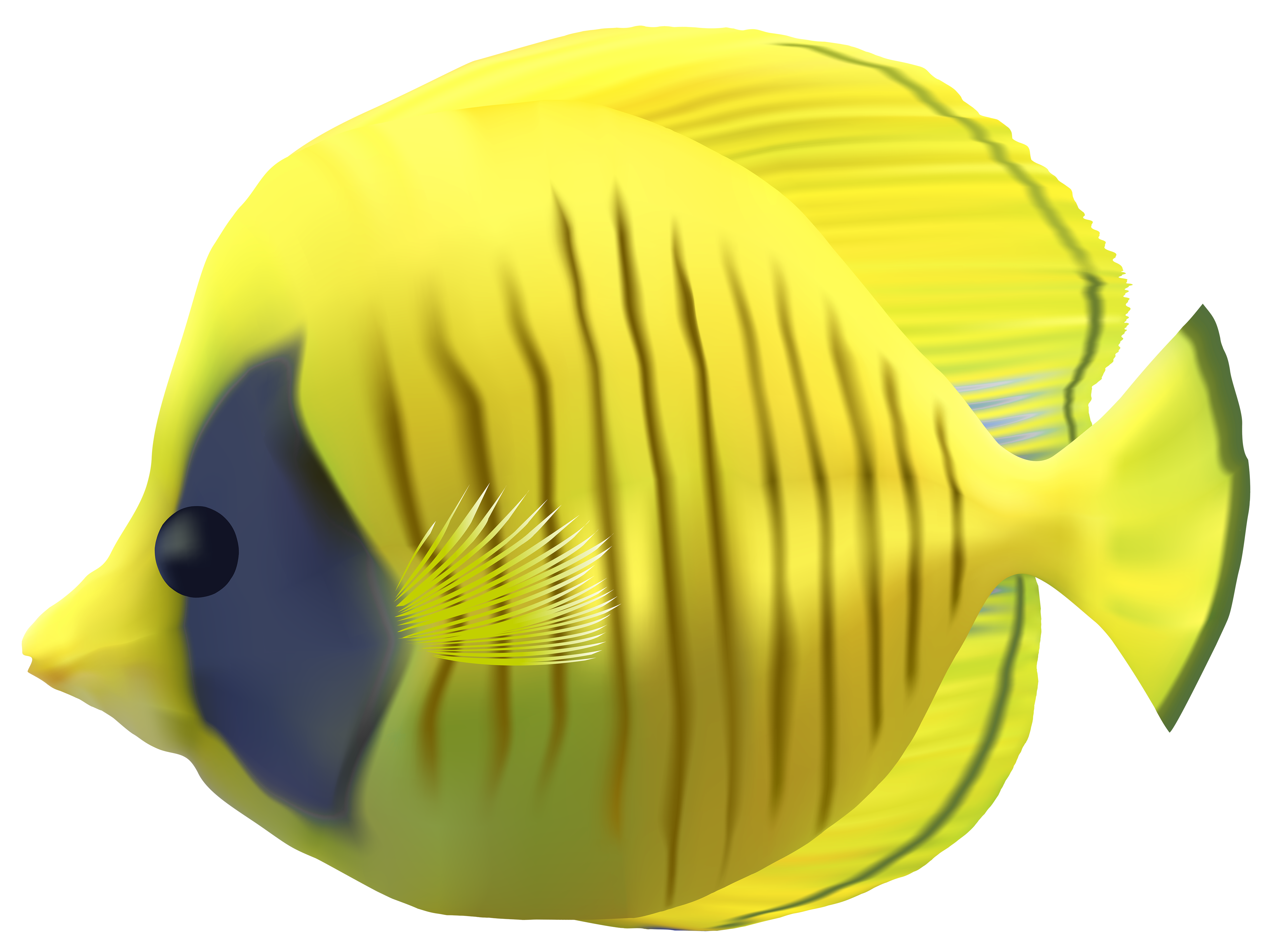 Yellow fish clipart image free Clipart fish transparent background - Graphics - Illustrations ... image free