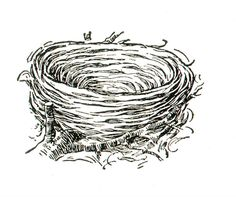 Empty nest pictures clipart jpg library library Empty nest clipart black and white - Clip Art Library jpg library library