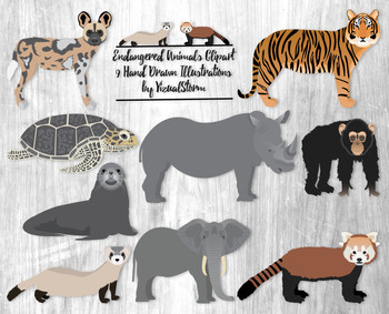 Endangered species in clipart freeuse library Endangered Animals Clipart - 9 Hand Drawn Wild Endangered Animal Species freeuse library