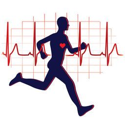 Endurance clipart graphic free stock Cardiovascular endurance clipart 4 » Clipart Portal graphic free stock