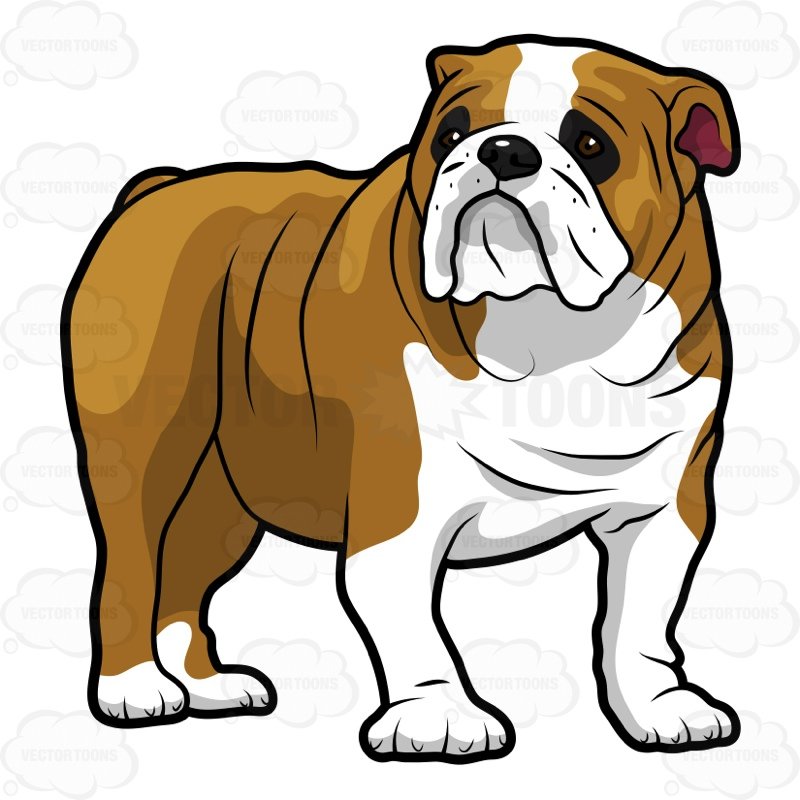 English bulldog cliparts free cricet png Collection of Bulldog clipart | Free download best Bulldog clipart ... png