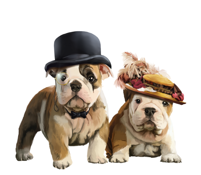 abramsonpng x kb. English bulldog with crown clipart