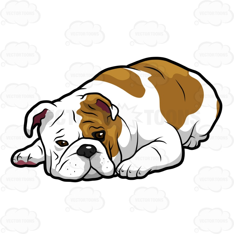 English bulldogs clipart clipart free download Download english bulldog clipart Dorset Olde Tyme Bulldogge White ... clipart free download