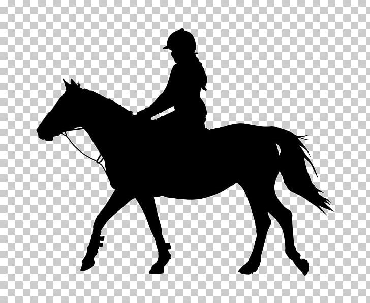 English horse clipart clip art library stock Standing Horse Equestrian English Riding PNG, Clipart, Animals, Bad ... clip art library stock