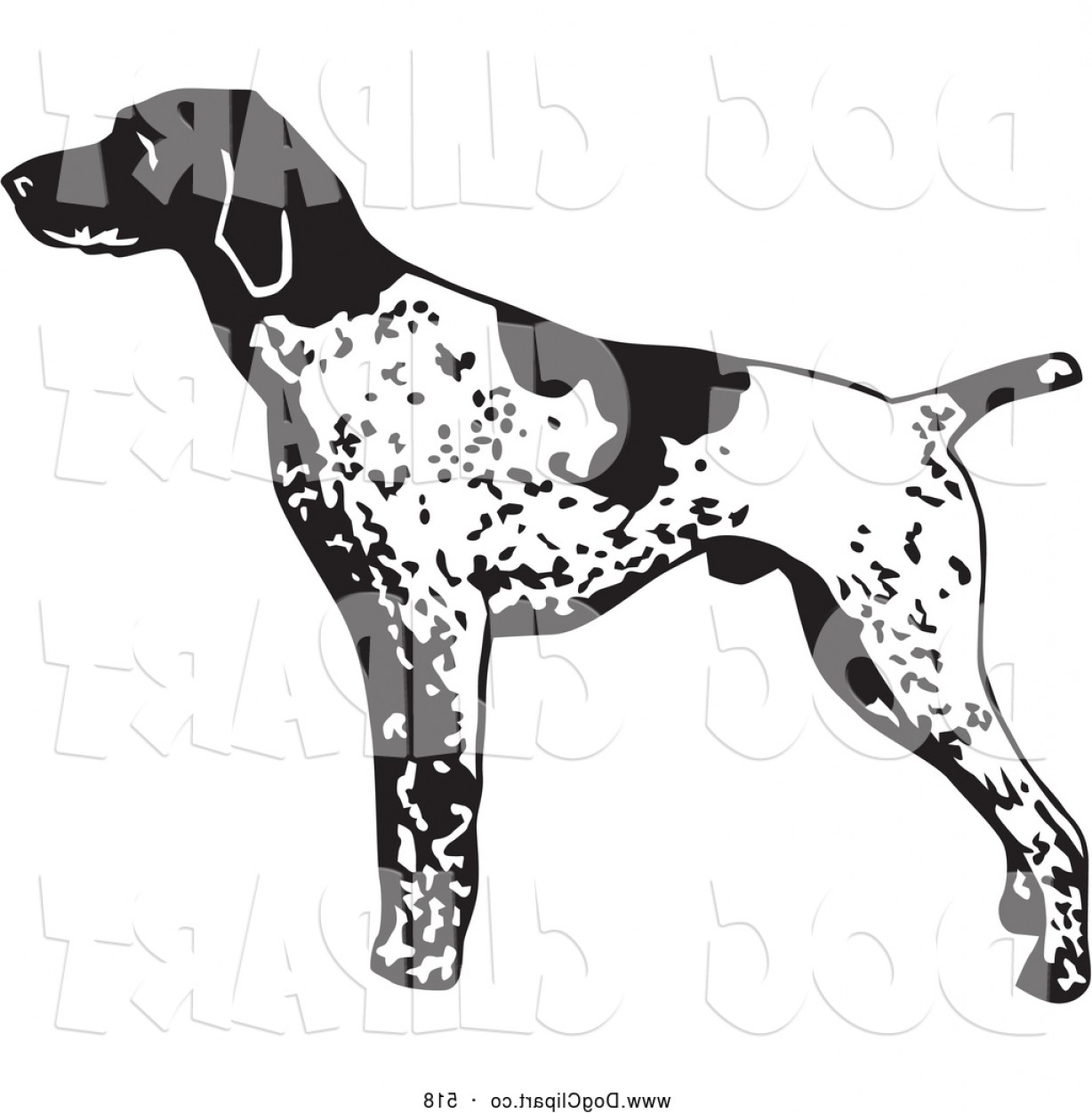 English pointer clipart jpg royalty free library Best Vector Clip Art Of A Cute And Alert English Pointer Dog ... jpg royalty free library