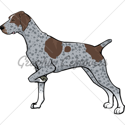 English pointer clipart clip library library German shorthaired pointer clipart - ClipartFest clip library library