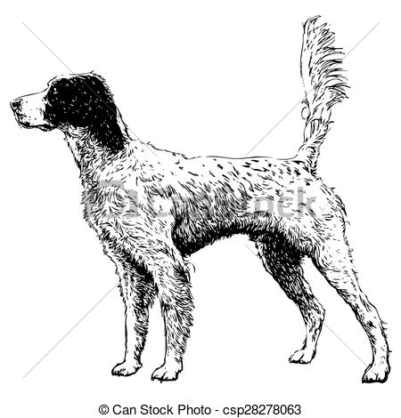English pointer clipart graphic library Clip Art Vector of English setter - Image of English setter hand ... graphic library