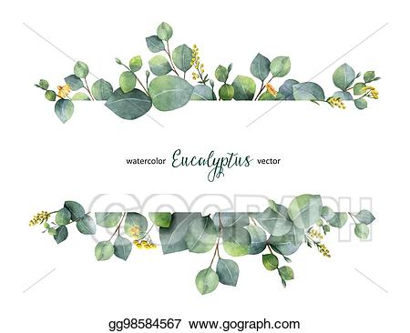 Eucalyptus leaves clipart clip free stock Clip Art Vector - Watercolor vector green floral banner with silver ... clip free stock