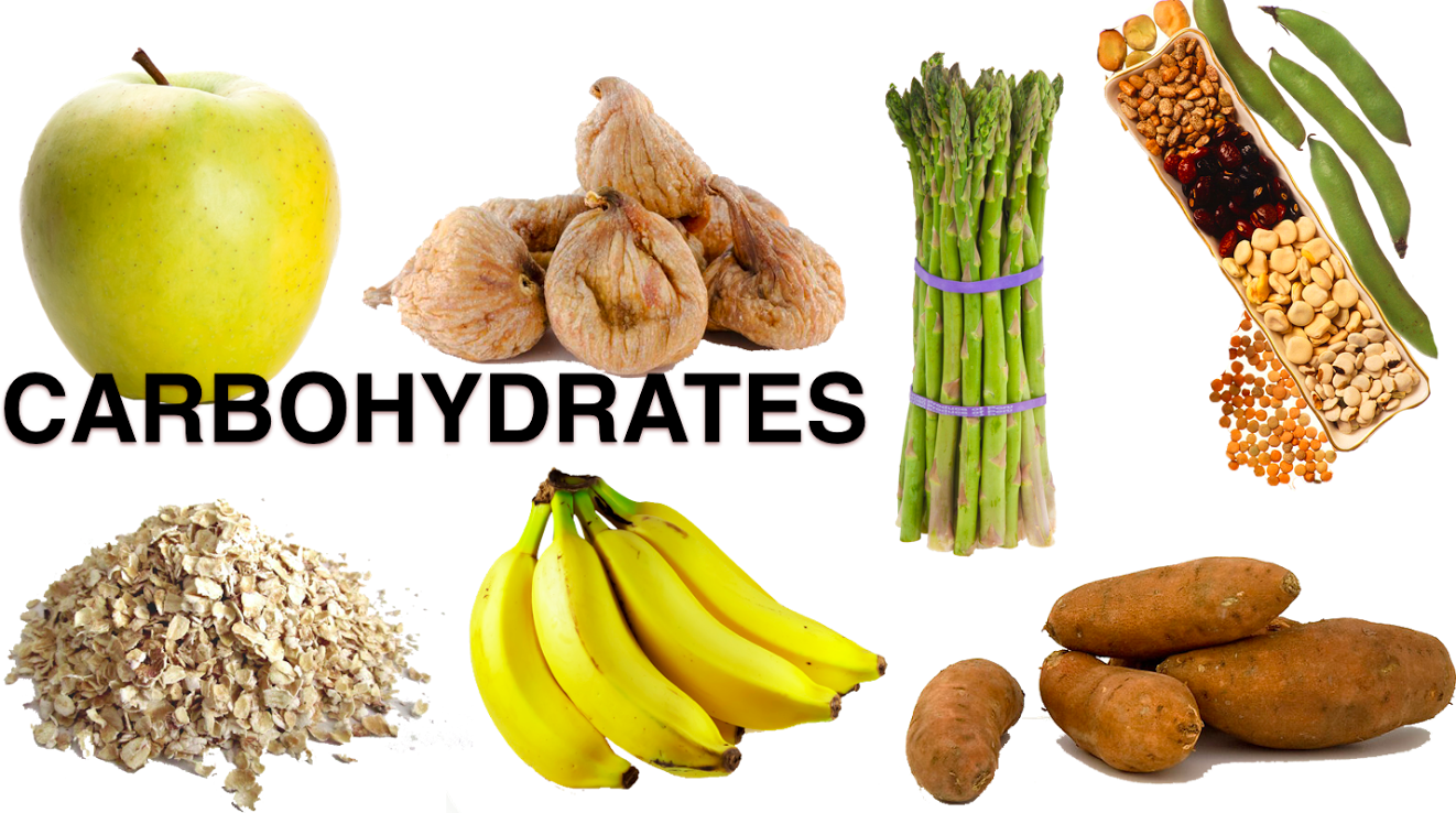 Examples of carbohydrates - ClipartFest svg transparent stock