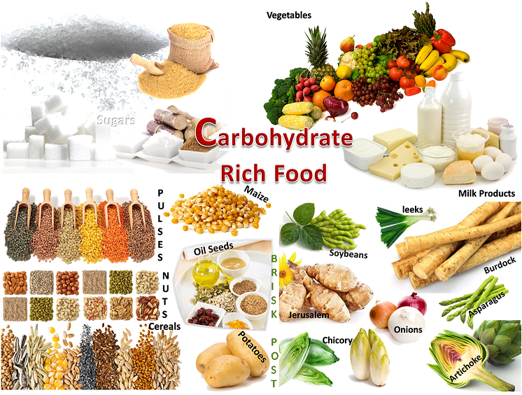 Examples of carbohydrates clip art freeuse Good Examples of Carbohydrates Clip Art – Clipart Free Download clip art freeuse