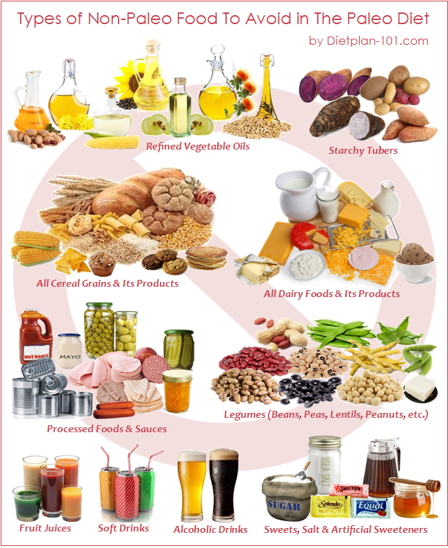 Examples of go foods clipart clipart royalty free library The Paleo Diet: Eating Modern Daily Foods in the Paleolithic ... clipart royalty free library