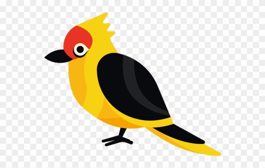 Exotic bird clipart clip free download Exotic Clipart Exotic Bird - Passaros Exóticos E Flores - Png ... clip free download