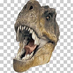 Extreme dinosaurs clipart png free library Dinosaurs PNG Images, Dinosaurs Clipart Free Download png free library