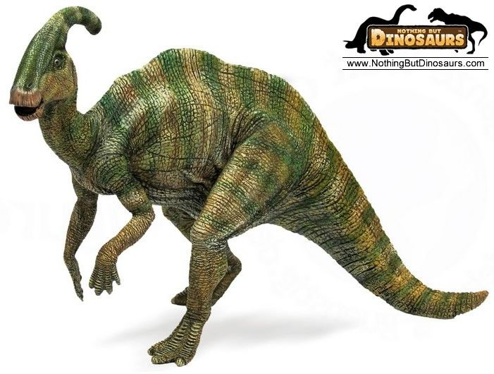 Extreme dinosaurs clipart vector Free Realistic Dinosaur Cliparts, Download Free Clip Art, Free Clip ... vector