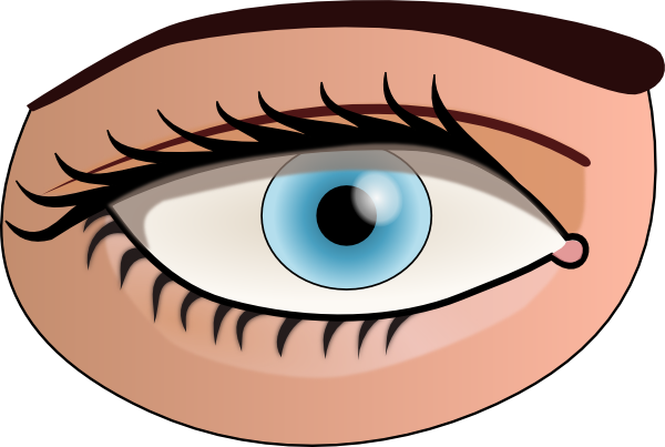 Eye cliparts vector library download Eye Clip Art For Kids | Clipart Panda - Free Clipart Images vector library download