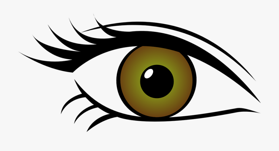 Eye color clipart picture free download Green Eyes Clipart Horse Eye - Eye Color Clip Art , Transparent ... picture free download