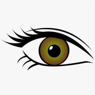 Eye color clipart jpg Green Eyes Clipart Horse Eye - Eye Color Clip Art , Transparent ... jpg