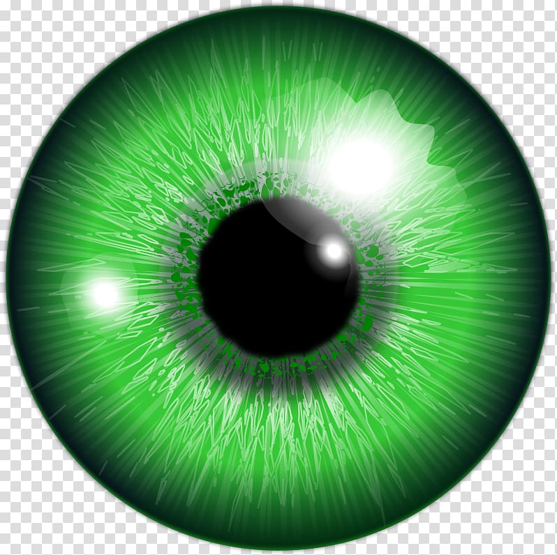 Eye color clipart royalty free stock Green eye iris, Eye color Lens flare, Eye transparent background PNG ... royalty free stock