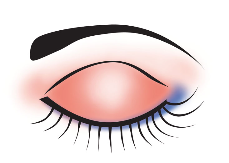 Eyeshadows clipart banner Free Makeup Cliparts Eyeshadow, Download Free Clip Art, Free Clip ... banner