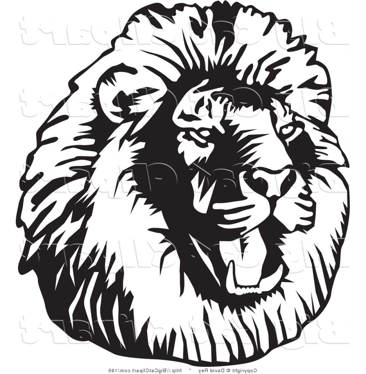 Facing clipart graphic library Big Cat Vector Clipart Of A Black And White Roaring Male Lion Head ... graphic library