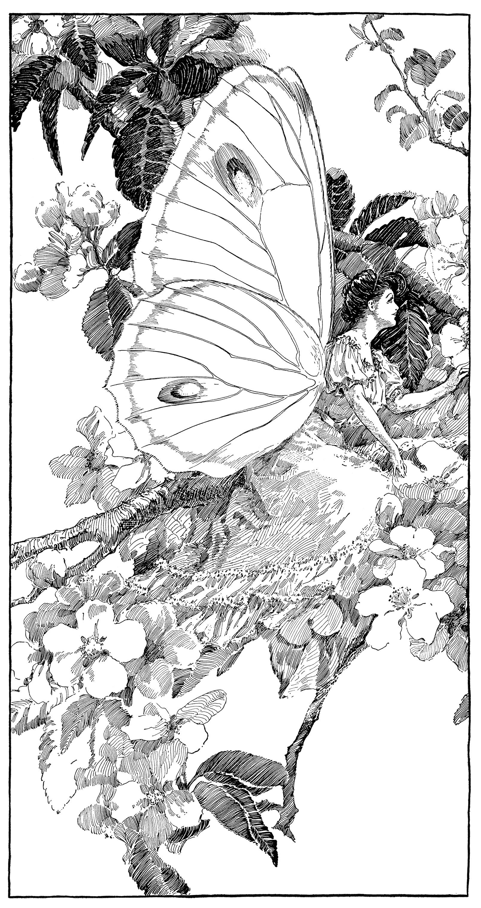 Fairy house parts clipart black and white graphic royalty free vintage clipart butterfly, printable fairy graphics, digital fairy ... graphic royalty free