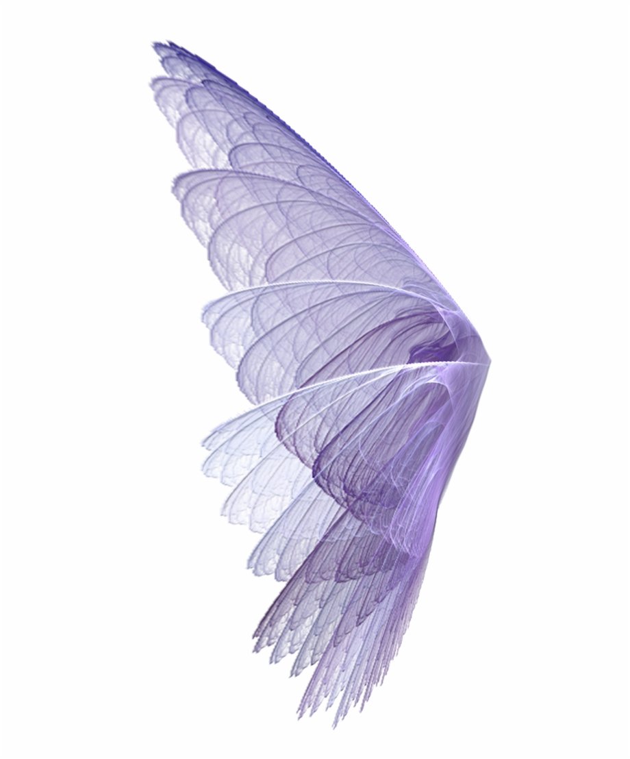 Fairy wings transparent clipart image freeuse Wing Wingssticker Wings Perpel Bts Exo Ss501 Kard Hyuna ... image freeuse
