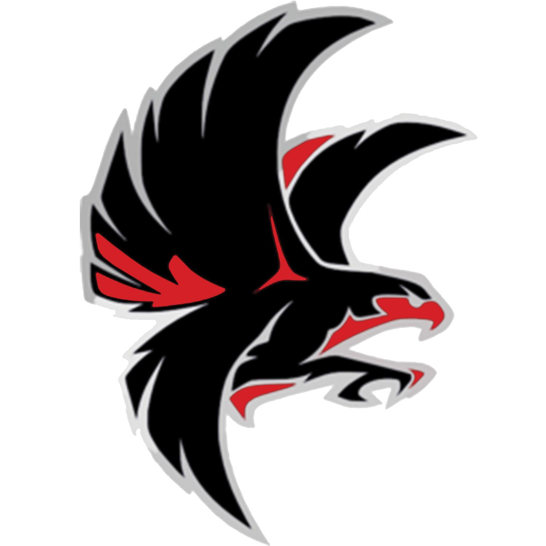 School mascot pinterest logos. Falcon football clipart