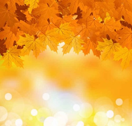Fall backgrounds clipart graphic transparent 46+ Fall Background Clipart | ClipartLook graphic transparent