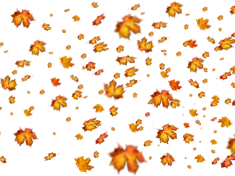 Nature clipart for photoshop banner royalty free download Fall Leaves Png Overlay For Photoshop (Nature-Grass-And-Foliage ... banner royalty free download